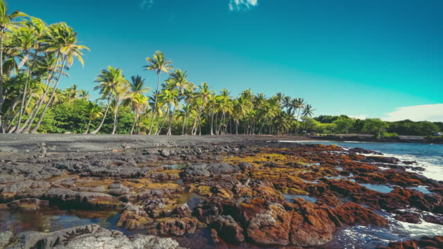 punalu'u beach coastline - big island hawaii islands stock videos & royalty-free footage