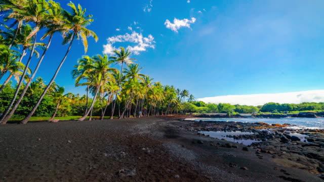 vídeos y material grabado en eventos de stock de punalu'u beach shore - isla grande de hawái islas de hawái