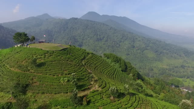 Puncak West Java, Indonesia.