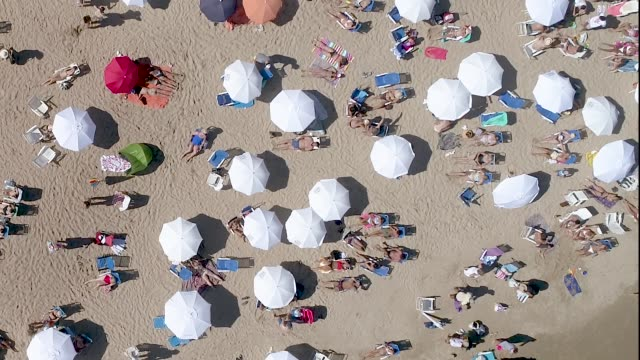 Punta del Este beach, directly above, aerial view, drone point of view, Uruguay