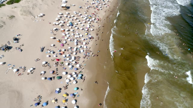 punta del este beach, directly above, aerial view, drone point of view, uruguay - sedative stock videos & royalty-free footage