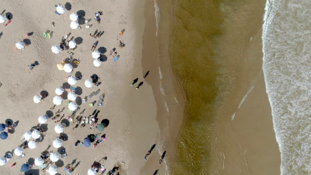 punta del este beach, directly above, aerial view, zoom in, drone point of view, uruguay - モンテビデオ点の映像素材/bロール
