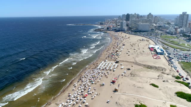 punta del este's beach, aerial view, drone point of view, sand and ocean, uruguay - sedative stock videos & royalty-free footage