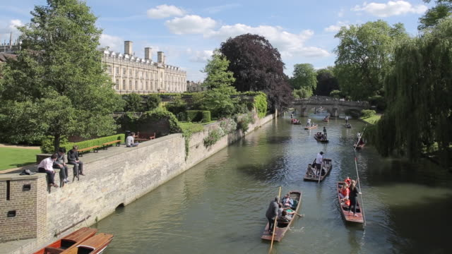 punting in river cam, cambridge, cambridgeshire, england, uk, europe - cambridge england stock videos and b-roll footage