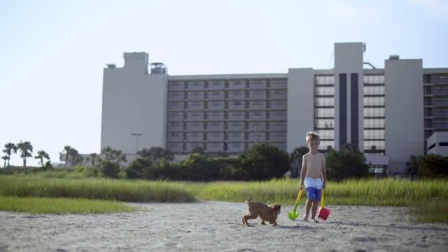 puppy hops and plays as young boy with sand toys walks through coastal marsh. - badbyxor bildbanksvideor och videomaterial från bakom kulisserna