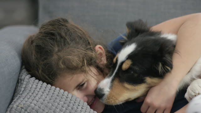 puppy kisses - children only stock videos & royalty-free footage