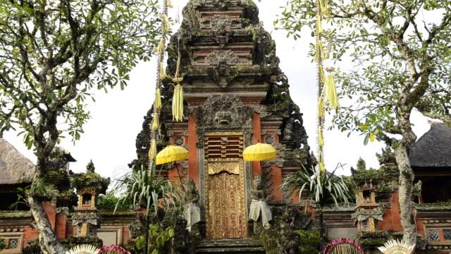 ms td puri saraswati temple / ubud, bali, indonesia - rappresentazione di animale video stock e b–roll
