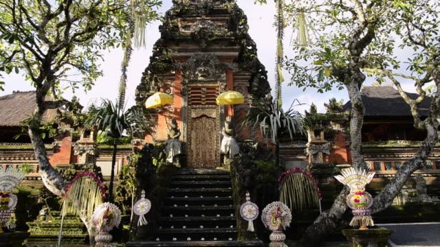 ms puri saraswati temple / ubud, bali, indonesia - rappresentazione di animale video stock e b–roll