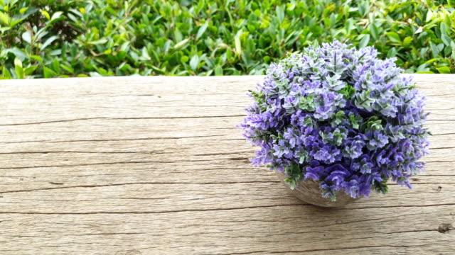 purple flowers. - vase stock videos & royalty-free footage