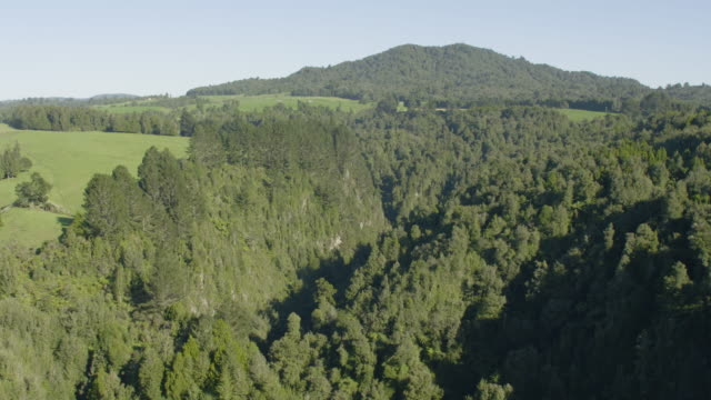 push in shot of a canyon in new zealand - hill stock videos & royalty-free footage