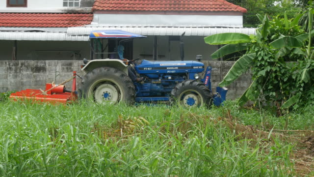 Pushcart in field
