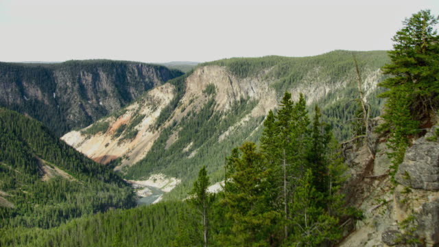 push-in shot of the grand canyon of the yellowstone revealed from behind a mountaintop - wyoming stock videos & royalty-free footage