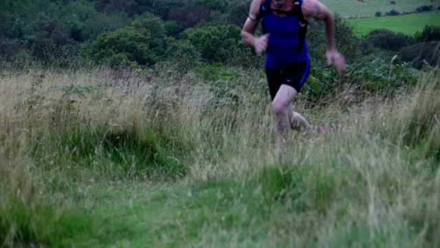 pushing the limits - cross country running stock videos & royalty-free footage