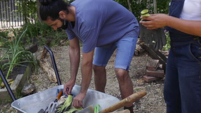 att sätta på handskar innan man övergår loggar på gård - trädgårdshandske bildbanksvideor och videomaterial från bakom kulisserna