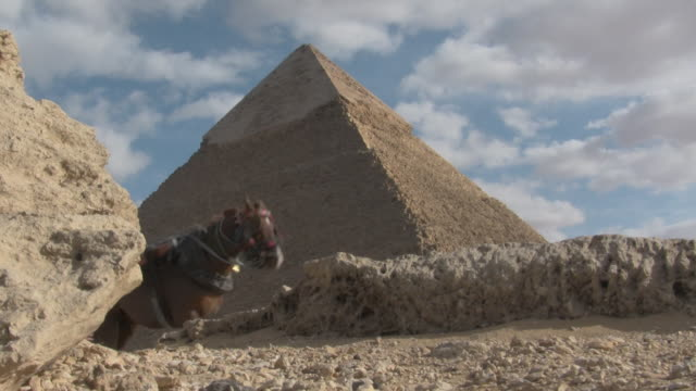 ms, la, pyramid of khafre, giza, egypt - low angle view stock videos & royalty-free footage