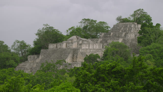 """Pyramid of Mayan temple ruin in forest, Calakmul, Mexico"""