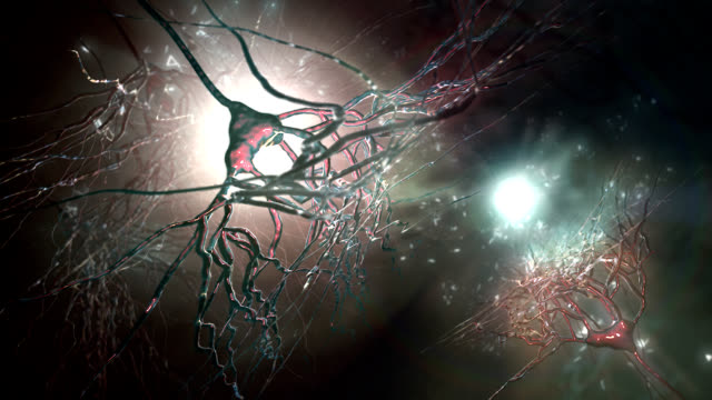 pyramidal nerve cells - biological process stock videos and b-roll footage