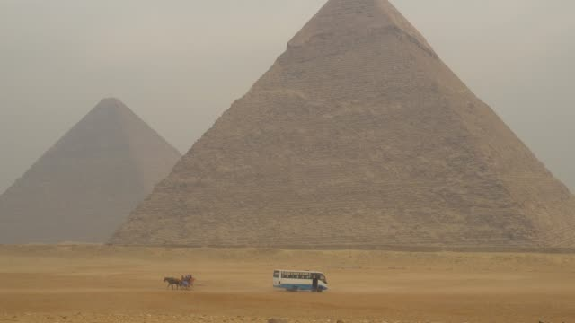pyramids in giza, egypt. - horse cart stock videos & royalty-free footage