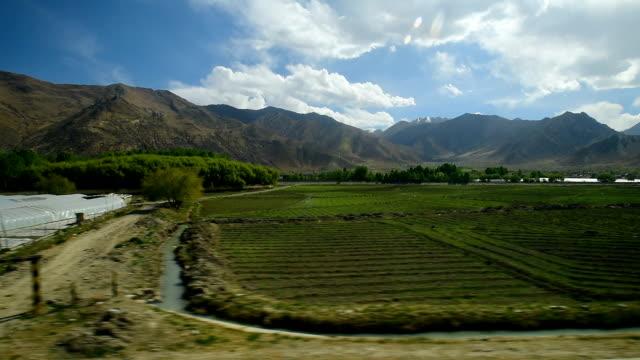 qinghai-tibet plateau in china 015 - tibetan plateau stock videos & royalty-free footage