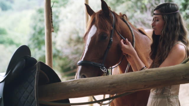 quality time with my beloved beauty - bridle stock videos & royalty-free footage
