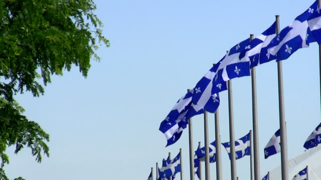quebec flags - quebec flag stock videos & royalty-free footage