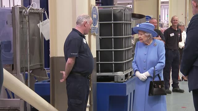 queen and duke of cambridge begin scotland visit with tour of irn bru factory; scotland: edinburgh: palace of holyroodhouse: ext queen elizabeth... - pattern stock videos & royalty-free footage