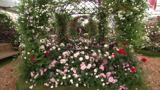 queen attends rhs chelsea flower show 2018 preview; england: london: chelsea: int gvs horse and cart made from flowers / gvs flower displays ext... - festival dei fiori di chelsea video stock e b–roll