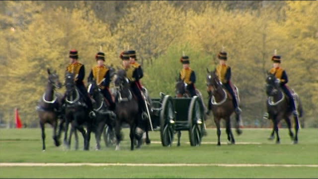 hyde park gun salute england london hyde park ext various shots of king's troop royal horse artillery along in park - royal horse artillery stock videos and b-roll footage