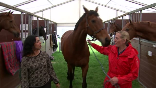 queen elizabeth 90th birthday: royal windsor horse show; windsor: int katie jerram along with reporer as leading along former racehorse, barbers... - 競走馬点の映像素材/bロール