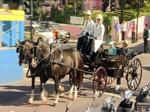 vídeos y material grabado en eventos de stock de queen elizabeth and prince philip ride through town on horse drawn carriage during trip to bermuda 26 november 2009 - estilo del 2000