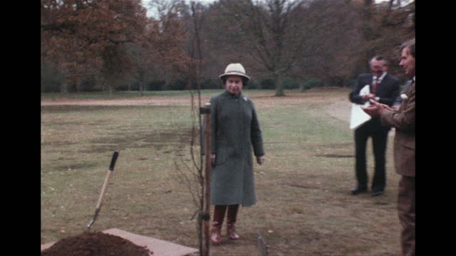 queen elizabeth ii planting a tree for the queen mother's 80th birthday, in windsor great park, 1980 - work tool stock videos & royalty-free footage