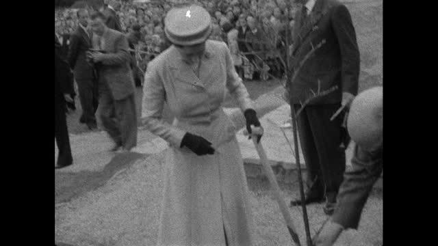 queen elizabeth ii planting a tree on visit to barnstaple, 1956 - work tool stock videos & royalty-free footage