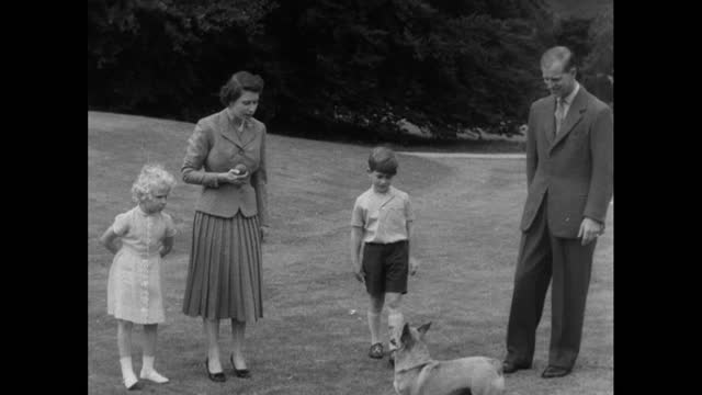 queen elizabeth ii, prince philip, prince charles and princess anne play with pet dogs during a family holiday at balmoral; 1955. - concepts & topics stock videos & royalty-free footage