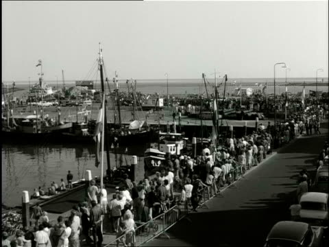 queen juliana and prince bernhard visit the frisian islands by helicopter and bus / ameland terschelling vlieland friesland netherlands - aquatisches lebewesen stock-videos und b-roll-filmmaterial