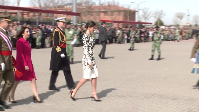 queen letizia observes the sky diving show of the 'napoles' infantry calvary the experts created a show in honor of the queen - infanterie stock-videos und b-roll-filmmaterial