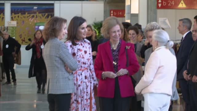 queen letizia of spain and queen sofia visit 'rastrillo nuevo futuro' on november 19 2019 in madrid spain - arts culture and entertainment stock videos & royalty-free footage