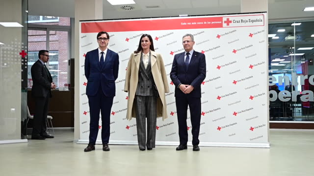 queen letizia of spain attends a meeting at red cross headquarters on january 16 2020 in madrid spain - arts culture and entertainment stock videos & royalty-free footage