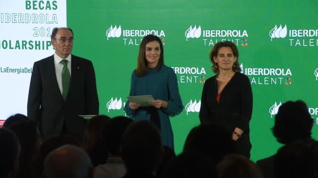 queen letizia of spain attends ibedrola foundation scholarships on january 31 2019 in madrid spain - teilnehmen stock-videos und b-roll-filmmaterial