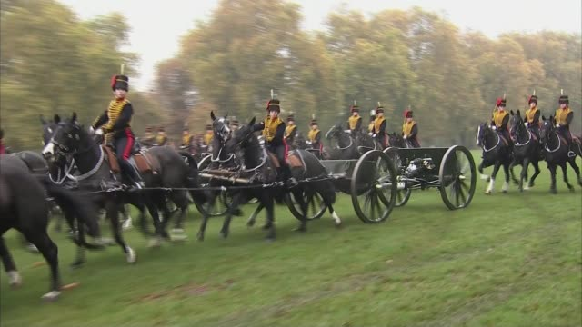 queen marks 70th anniversary of the king's troop royal horse artillery england london hyde park ext side view of queen elizabeth ii standing on dais... - royal horse artillery stock videos and b-roll footage