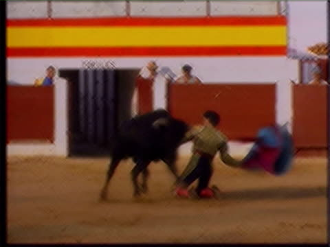 queen mother funeral row continues lib matador facing bull during bullfight bullfighting poster with government director of communications alastair... - bullfighter stock videos & royalty-free footage