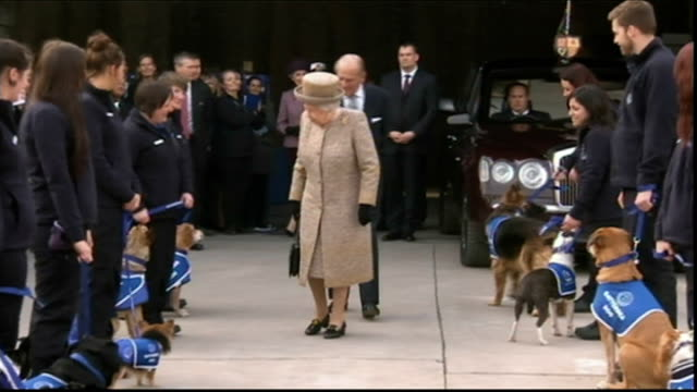 queen opens new kennels at battersea dogs and cats home england london battersea dogs and cats home ext queen elizabeth ii the queen and prince... - paul o'grady stock-videos und b-roll-filmmaterial