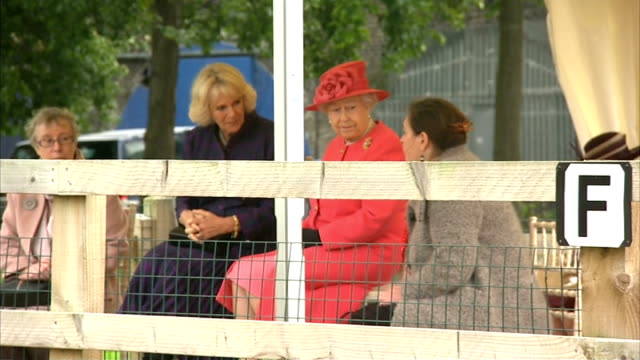 queen visits ebony horse club queen and duchess taking seats to watch display of horse riding by pupils of the ebony horse club / various of the... - narrating stock videos & royalty-free footage