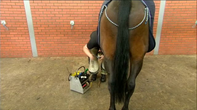 queen visits the kings troop royal horse artillery at woolwich barracks queen watching farriers and blacksmiths at work shoeing horses / general... - royal horse artillery stock videos and b-roll footage