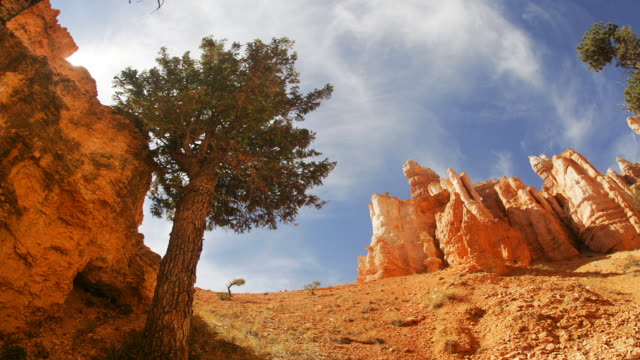 ms, la, pan, fish eye, queens garden, bryce canyon national park, utah, usa - bryce canyon stock videos and b-roll footage