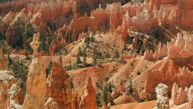 zo, ws, queens garden, bryce canyon national park, utah, usa - bryce canyon stock videos and b-roll footage