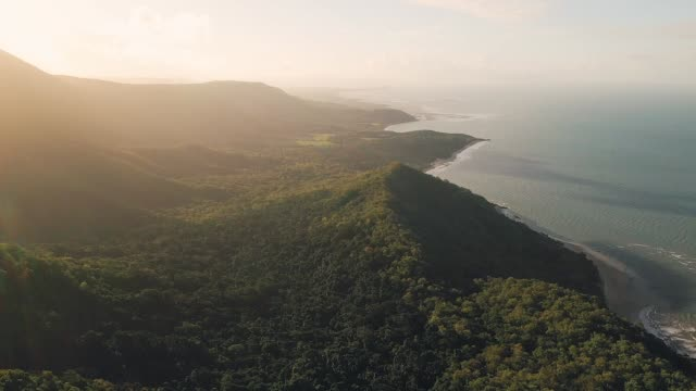 queensland mountain drone footage - rainforest stock videos & royalty-free footage