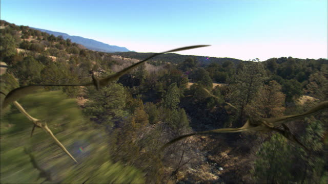 quetzalcoatluses soar over other dinosaurs. - dinosaur stock videos & royalty-free footage