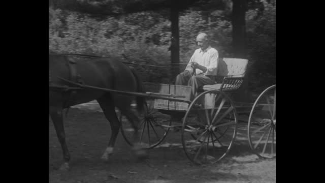 quick clip of a senior man riding a horse-drawn buckboard buggy / note: exact year not known - horsedrawn stock videos & royalty-free footage