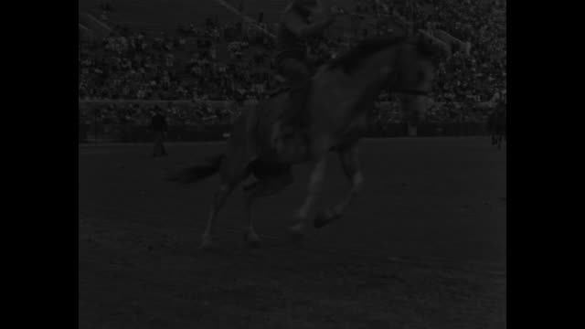 mr bronco won't argue pasadena there's something about a cowboy that is brave brave brave california's open season for bouncing up and down off is on... - bocksprång bildbanksvideor och videomaterial från bakom kulisserna