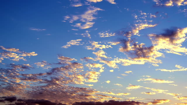 quiet heavenly evening sky. color of altocumulus clouds change from gold yellow to dark gray. - altocumulus stock videos and b-roll footage